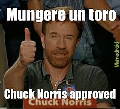 Approved Meme - chuck norris approved meme by mottadaniele2000 memedroid
