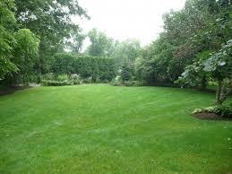 Big Backyard Landscaping Ideas Download Large Backyard Garden Design