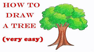 how to draw a tree step by step easy