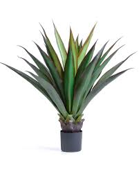 buy big leaf agave artificial succulent plant at officescapesdirect