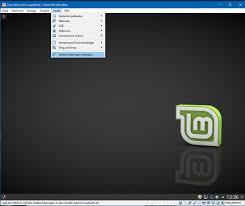 Red Flag Linux Linux Mint 18 2 Sonya Mit Virtualbox Installieren Zdnet De