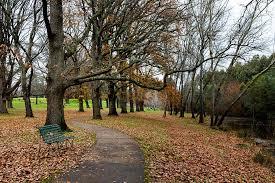 Kyneton Botanical Gardens Autumn Leaves Kyneton Botanic Gardens Hiking Fiasco
