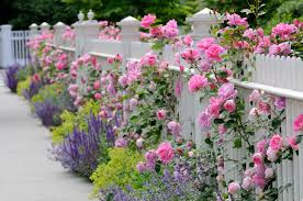 Beautiful Garden Ideas Pictures 40 Beautiful Garden Fence Ideas