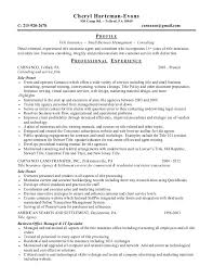 Insurance Sample Resume by Insurance Agent Resume Personal Insurance Agent Job Description