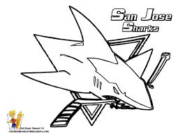 coloringpages animals shark coloring bebo pandco