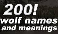 200 wolf names and meanings i werewolves