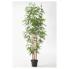 fejka artificial potted plant bamboo 21 cm ikea