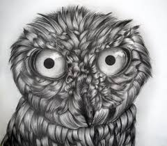 owl drawing 9th grade by icee bleu on deviantart