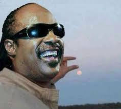 Stevie Meme - stevie wonder parody can you please photoshop the sun between my