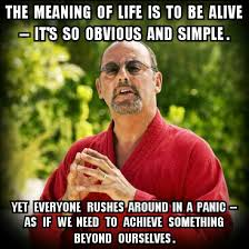 The Meaning Of Meme - the meaning of life not monty python memes