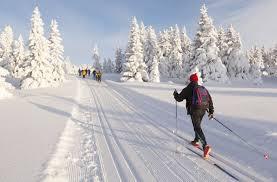 cross country skiing csa skischule silvia grillitsch obertauern