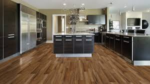 kitchen with black countertops and vinyl plank flooring
