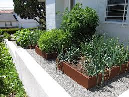 front yard vegetable gardens i u0027ve seen and loved u2039 green garden dreams