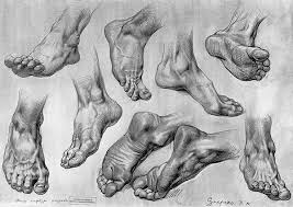 13 best foot images on pinterest drawings feet drawing and anatomy