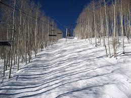 Relax The Back Lift Chair 2007 Mini Ski Epic