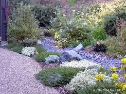 Drought Tolerant Backyard Ideas 165 Best Drought Tolerant Landscaping Ideas Images On Pinterest