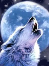 wolf and moon wallpaper iphone blackberry