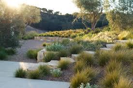 courtesy chris leschinksky paso robles landscaping pinterest courtesy chris leschinksky house landscapedesert