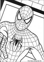 spiderman birthday coloring page spiderman coloring picture ethan might like pinterest
