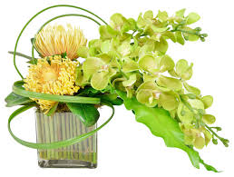 Artificial Floral Arrangements Orchids With Birds Nest Leaves In Glass Vase Contemporary