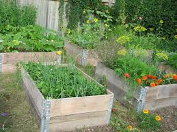 Greenes Fence Raised Beds by Raised Garden Beds With Style And Function Gardensall