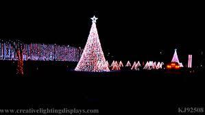 turtle back zoo lights wall light turtle back zoo holiday lights 2014jpg the christmas