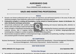 best ideas of sample of professional resume with experience about