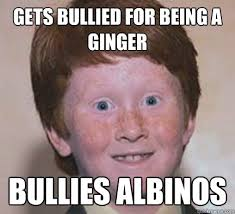 Albino Meme - gets bullied for being a ginger bullies albinos over confident