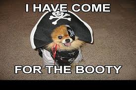 Pirate Booty Meme - enjoy talk like a pirate day with sexual innuendo dog