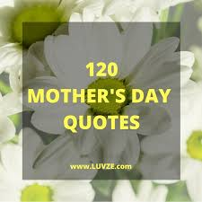 120 happy s day quotes card messages sayings wishes