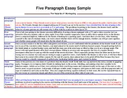 division classification essay samples best of classification essays samples resume daily classification essay examples personal essay outline paragraph writing samples submited images