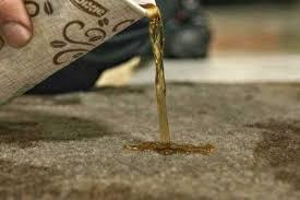 nettoyer si e voiture tissu comment nettoyer une tache de café sur moquette ou tissu detailing