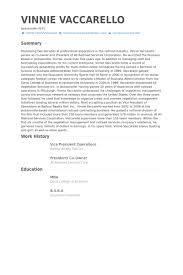 vice president operations resume samples visualcv resume samples