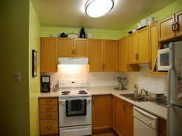 Best Kitchen Wall Paint Colors Unique Kitchen Green Color Schemes With Oak Cabinets Epic Design