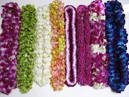 Graduation Leis Orchid Leis From Best Flower Leis Graduation Lei Season Starts Soon
