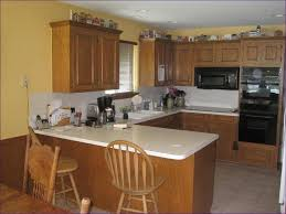 Recessed Can Lights Living Room Brilliant Kitchen Can Light Retrofit Recessed Lighting