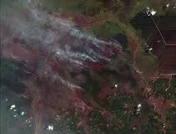 Active Wildfire Map by Land And Forest Fires In Indonesia Reach Crisis Levels World