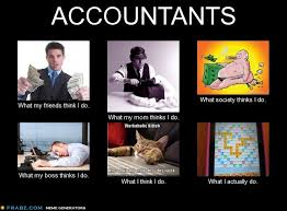 What My Friends Think I Do Meme - what my friends think i do what i actually do accountants what