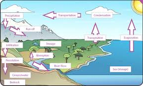 the water cycle gcse revision geography weather climate water