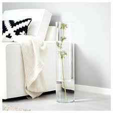 Vases Wholesale Bulk Glass Cylinder Vases Wholesale Nz Cheap Bulk 24 25846 Gallery
