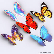 butterfly 3d models 3d butterfly files cgtrader com