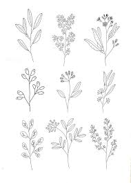Flower Drawings Black And White - best 25 botanical drawings ideas on pinterest botanical