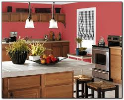 Popular Color For Kitchen Cabinets by Paint Color Ideas For Your Kitchen Home And Cabinet Reviews