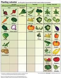 How To Start A Garden Bed Best 25 Gardening Calendar Ideas On Pinterest When To Plant