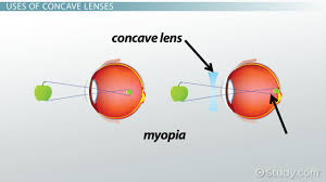ray diagrams u0026 lenses physics lab video u0026 lesson transcript