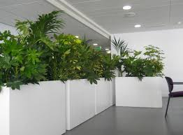 indoor planting indoor plants incredible plant pots polygon pot d printed