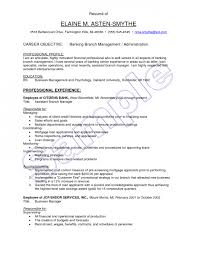 Sample Resume Operations Manager by Sample Resume Bank Credit Manager