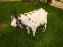 recycled meta i goat yard lawn ornament 199 http