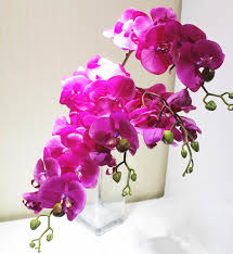 artificial orchids discount pu phalaenopsis real touch butterfly orchid 75cm 29 53