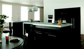 Black Gloss Kitchen Cabinets by Metallic Kitchen Doors Interior Home Interior U0026 Decorating